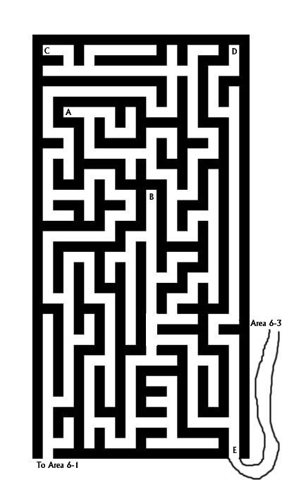 Maze 6-2B