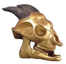 Golden Orcus Skull