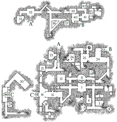 Ruined Temple of Illhan - Map by Dyson Logos