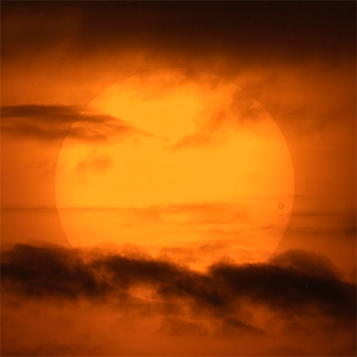 Transit of Venus - David Cortner