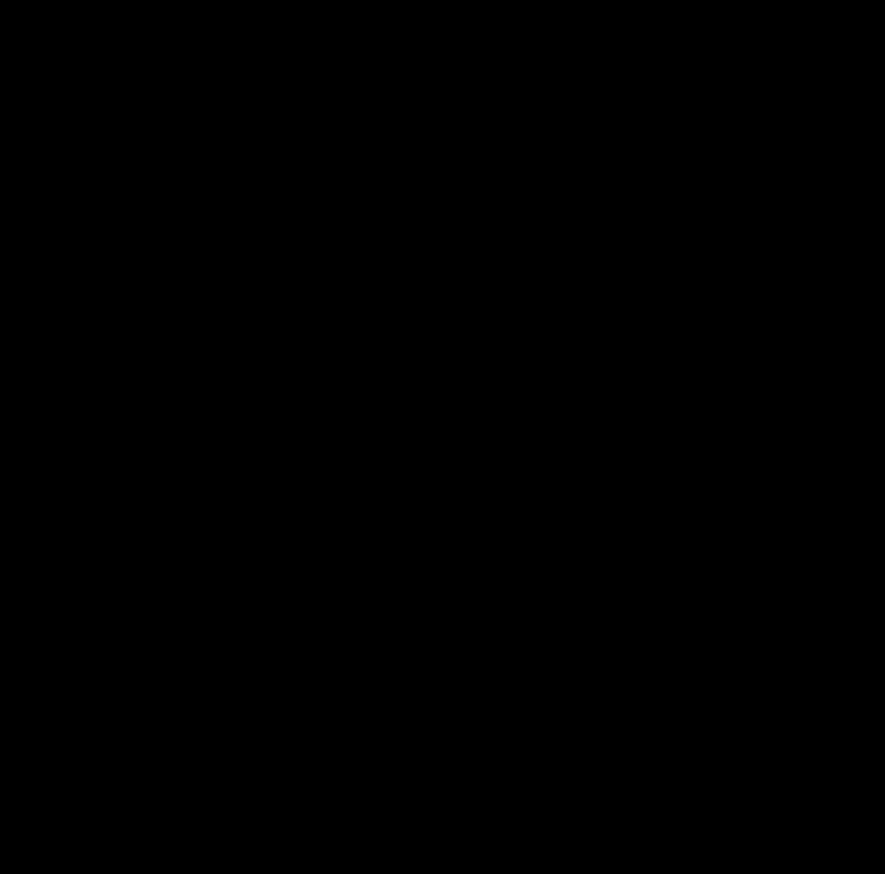 Vitruvian Man Symbol