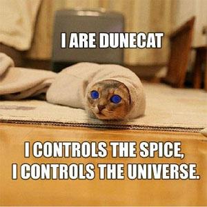 I Are Dunecat